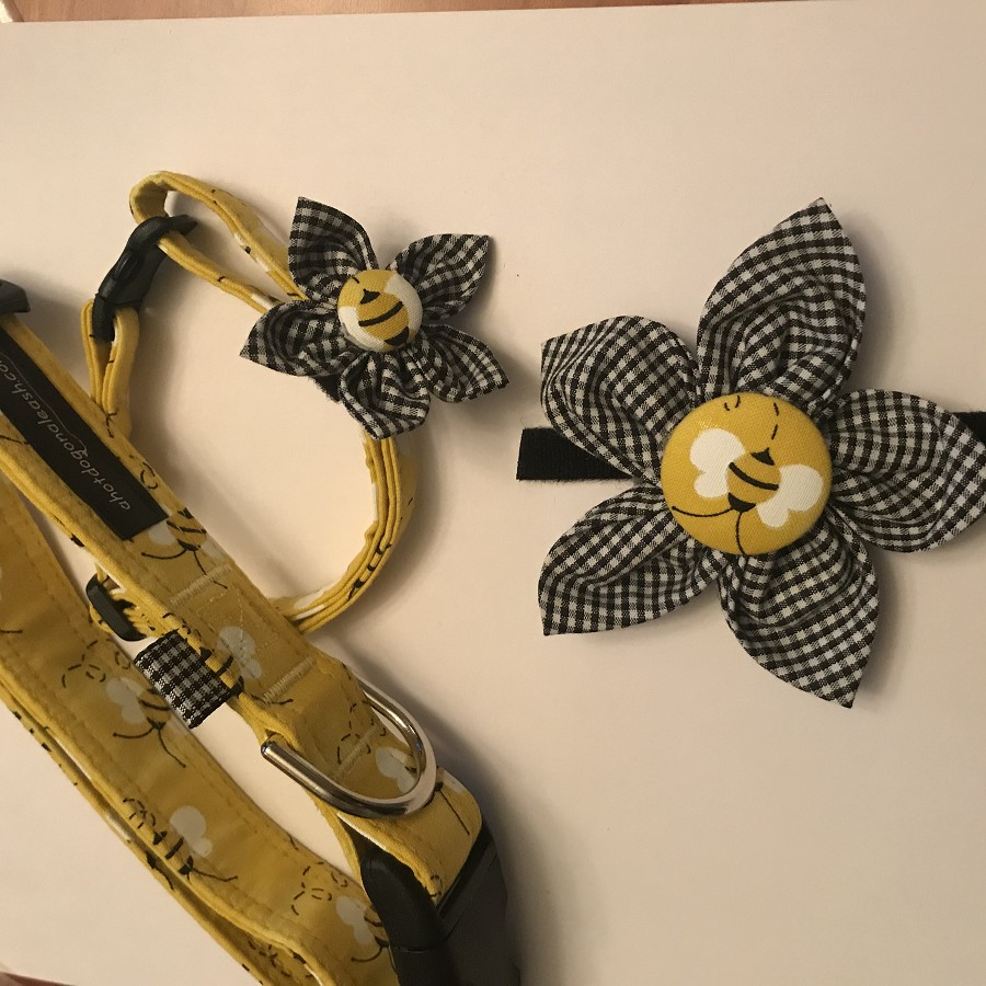 Bumble Bee Collar - Large